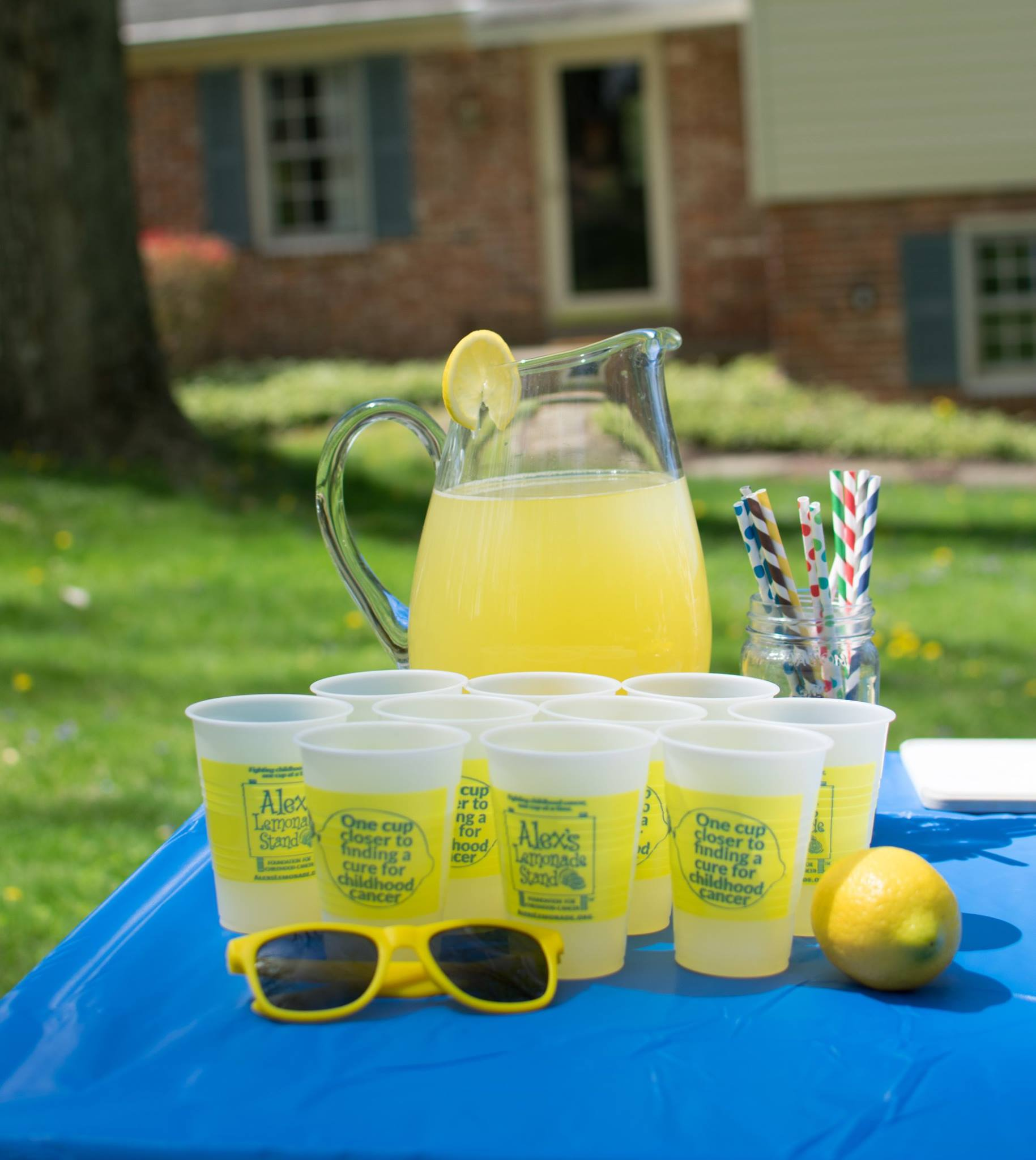 Support Alex's Lemonade Stand this Weekend in Mason ...