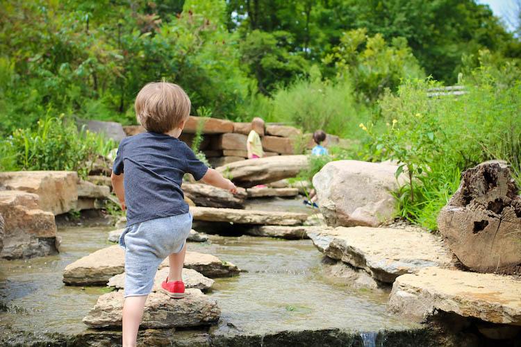 Cincinnati Nature Center PlayScape