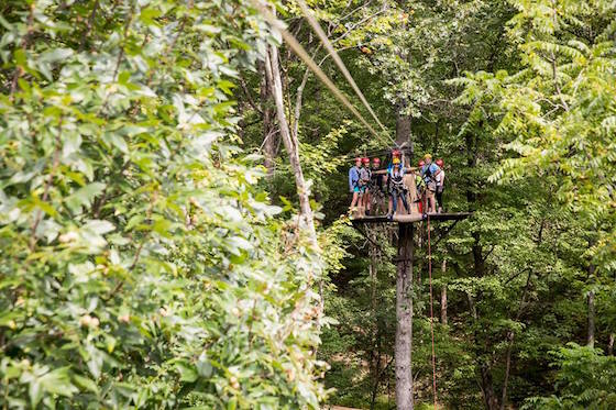 Photo credit: Tree Frog Canopy Tours