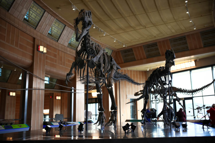 6 Attractions for Cincy Kids with Dinosaur Fever